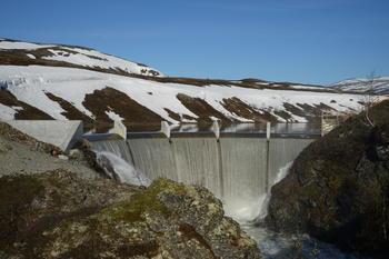 Dammen i smådøla